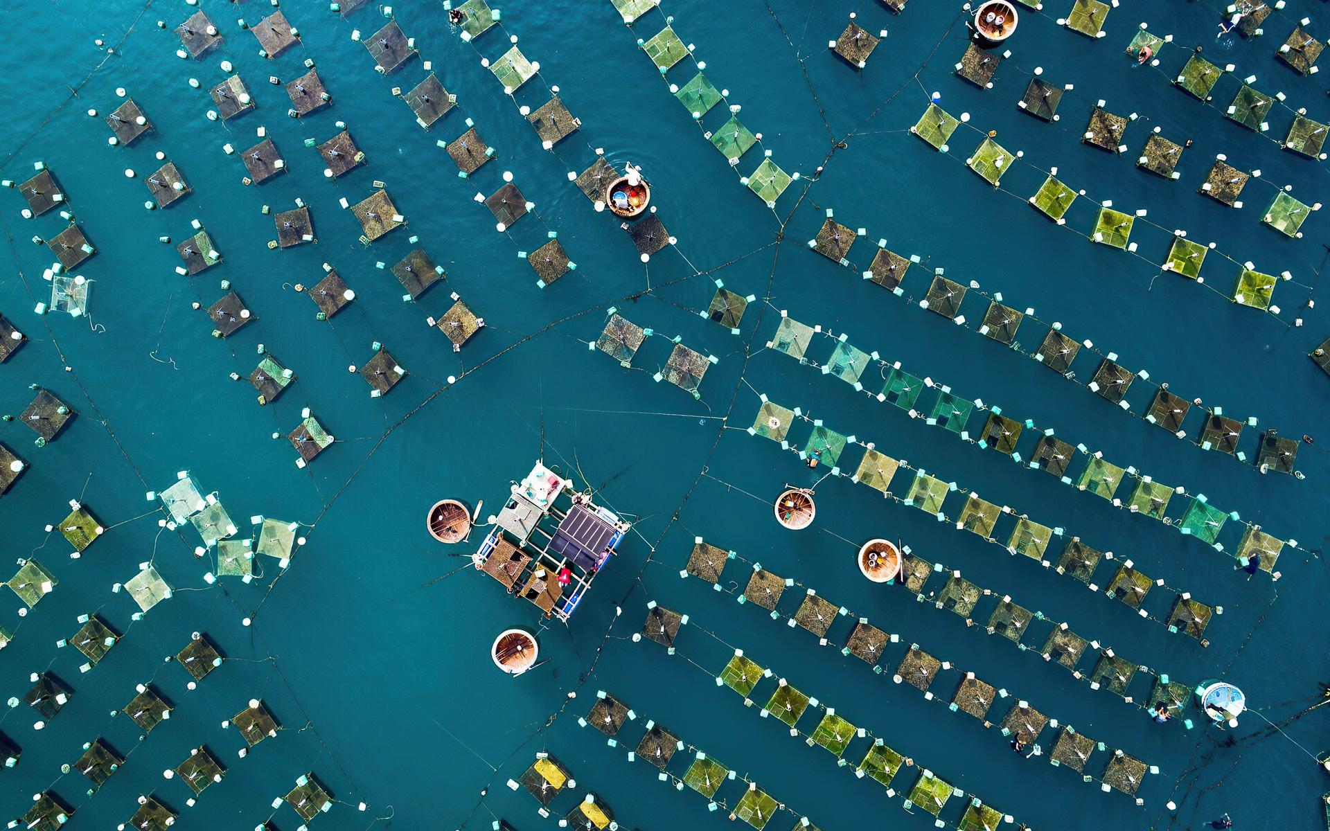 docks-top-view-4k-u0.jpg