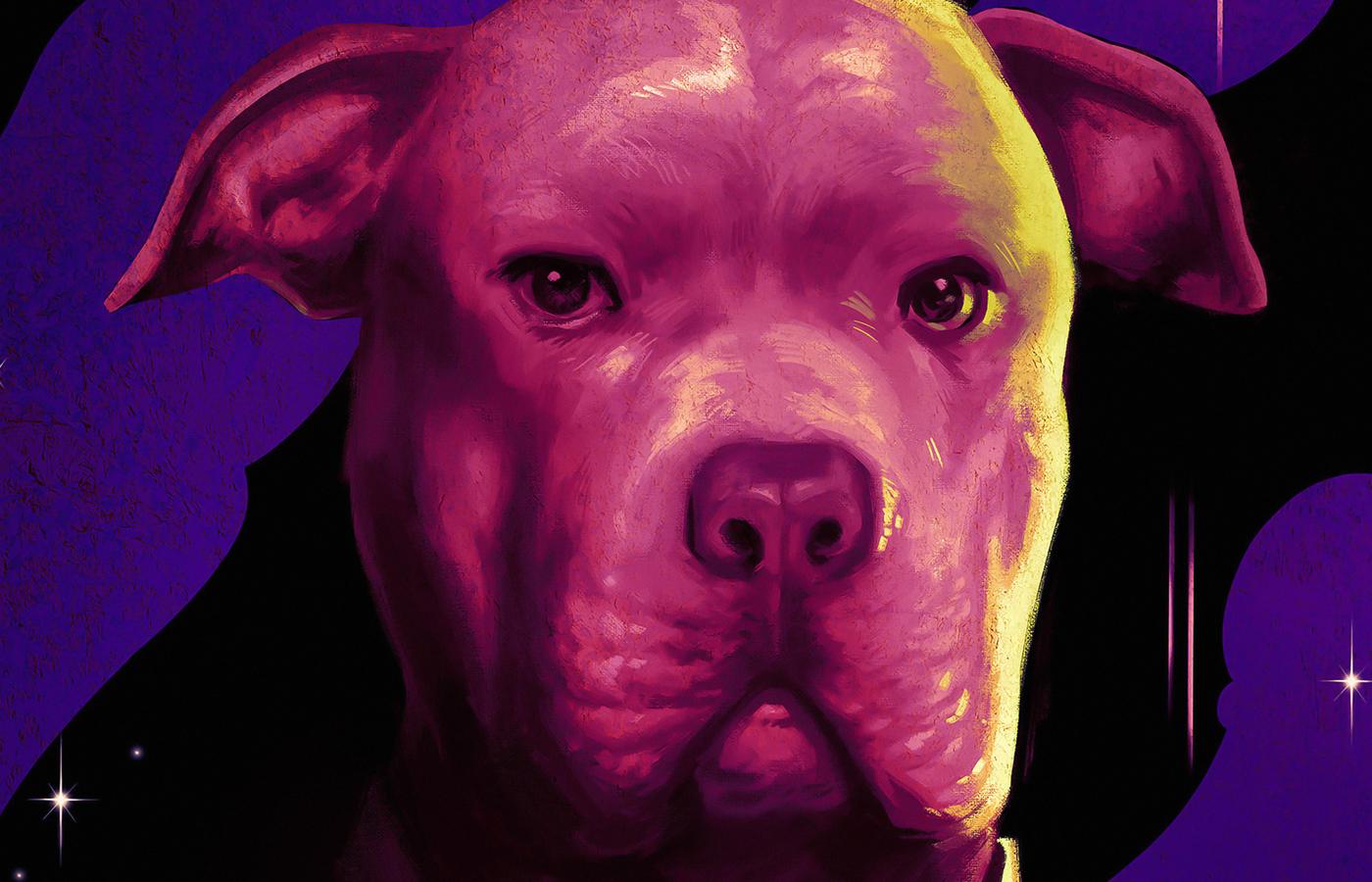 dog-in-john-wick-chapter-3-parabellum-4k-gb.jpg