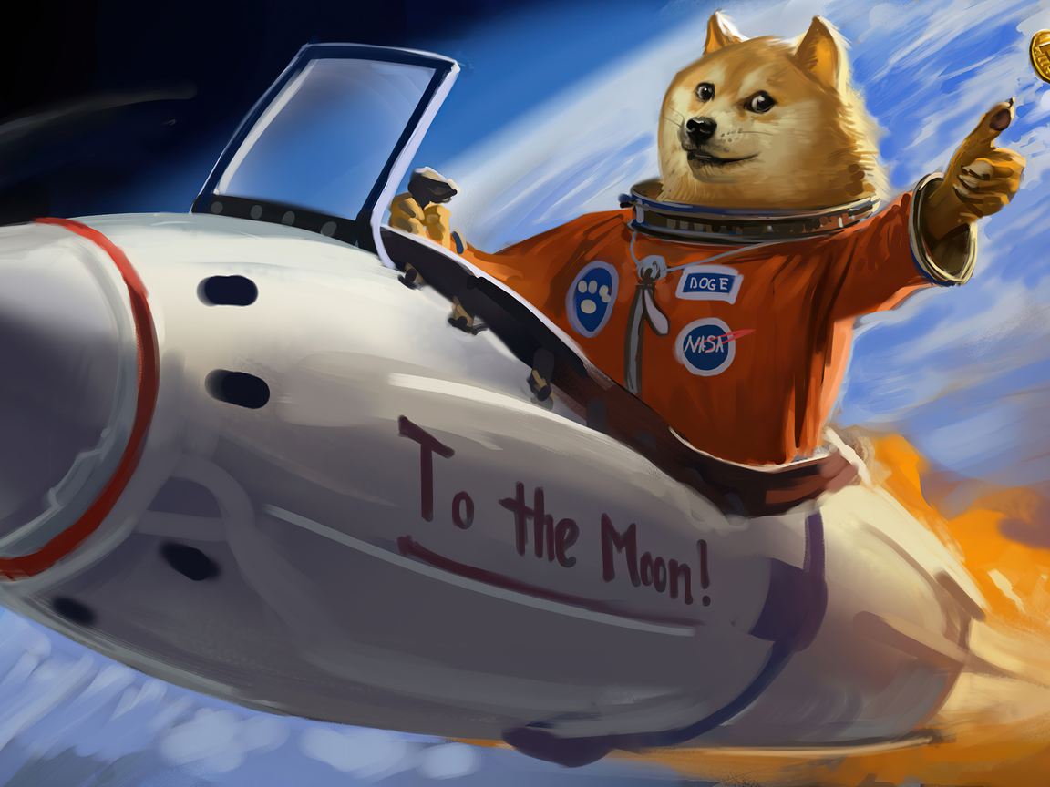 doge-to-the-moon-05.jpg