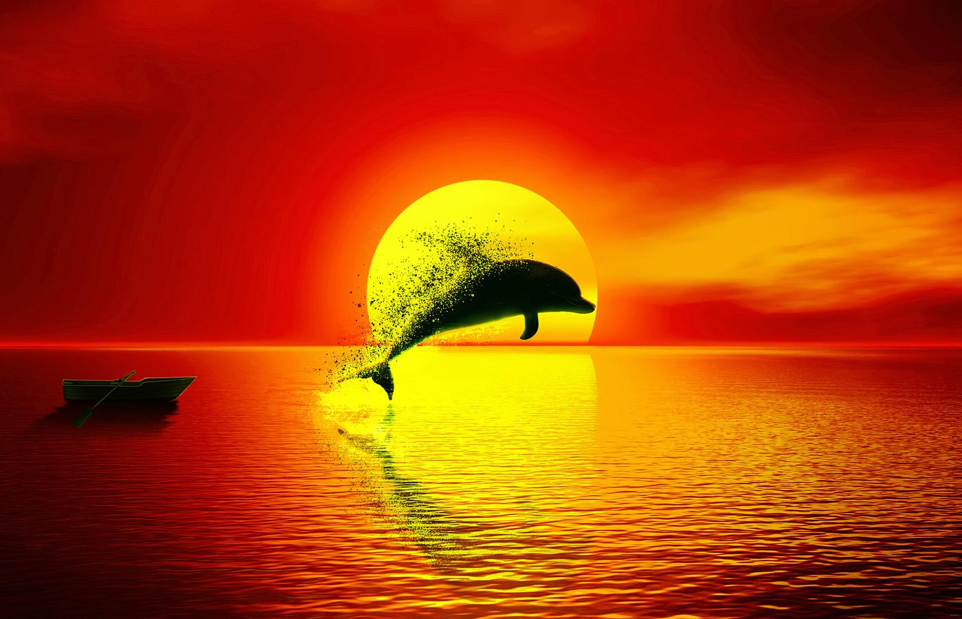 dolphin-dispersion-sunset-4k-om.jpg