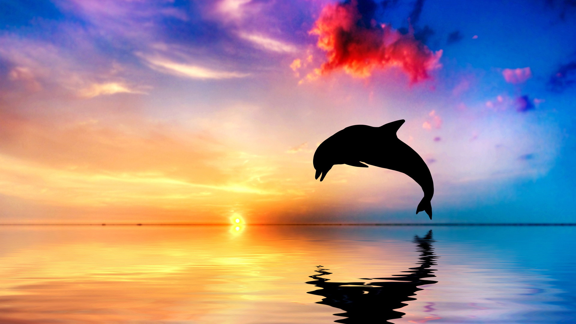 1920x1080 Dolphin Jumping Out Of Water Sunset View 4k Laptop Full Hd