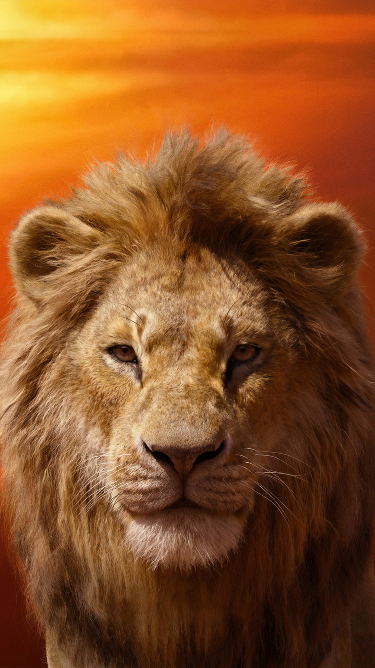 750x1334 Donald Glover As Simba The Lion King 2019 4k Iphone