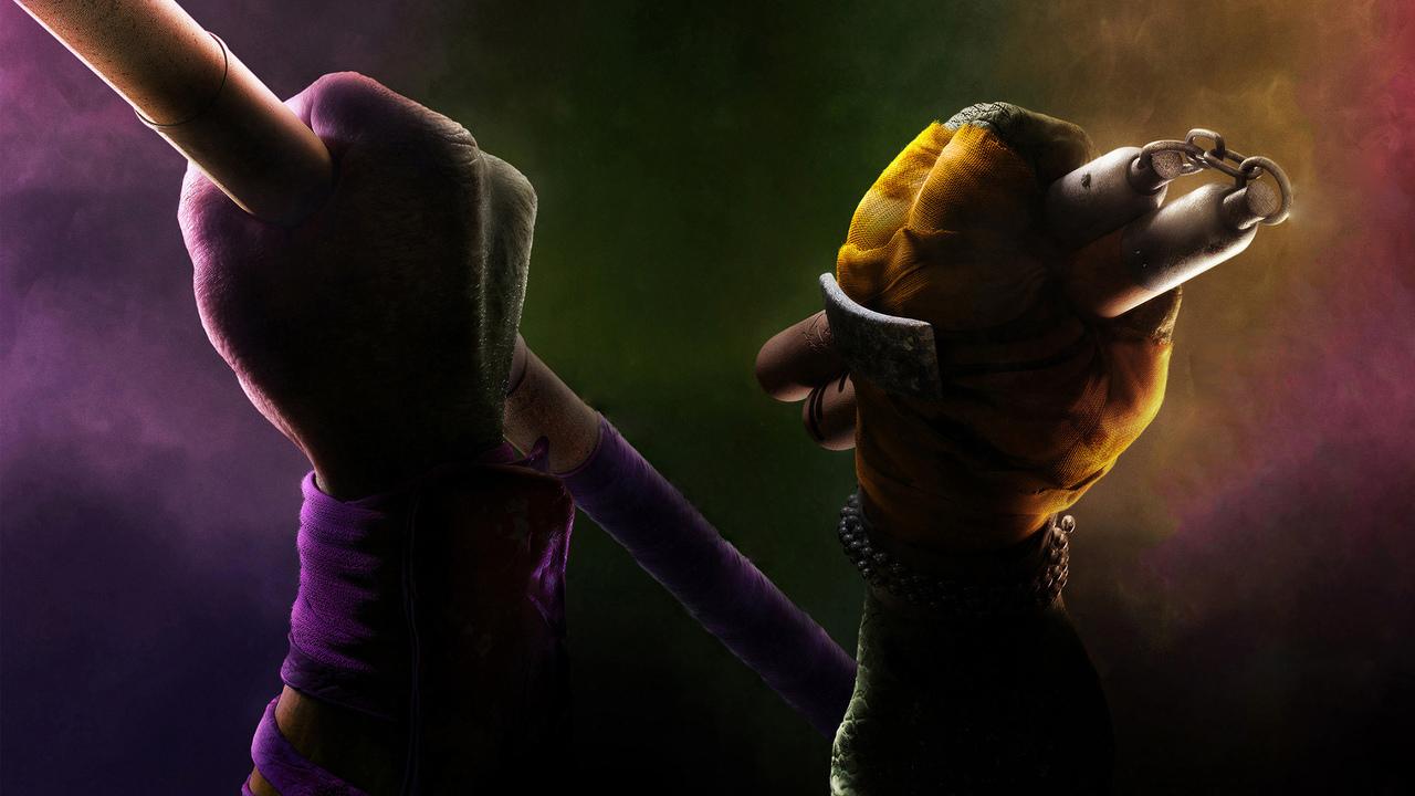 donatello-michelangelo-ninja-turtles-do.jpg