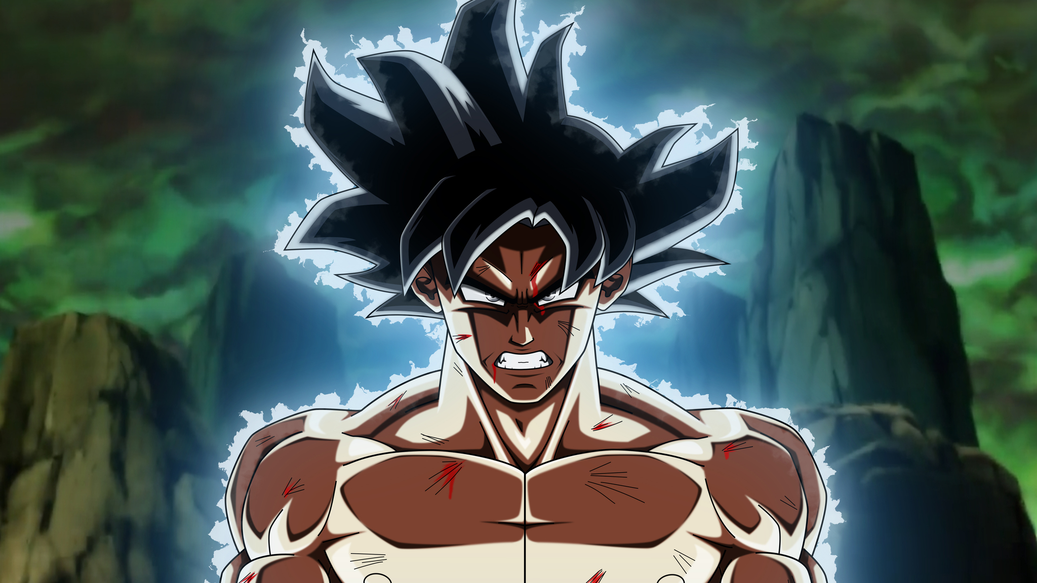 2048x1152 Dragon Ball Super Goku Ultra Instinct 2048x1152