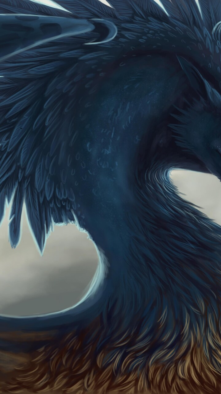 dragon-fantasy-art-feathers.jpg