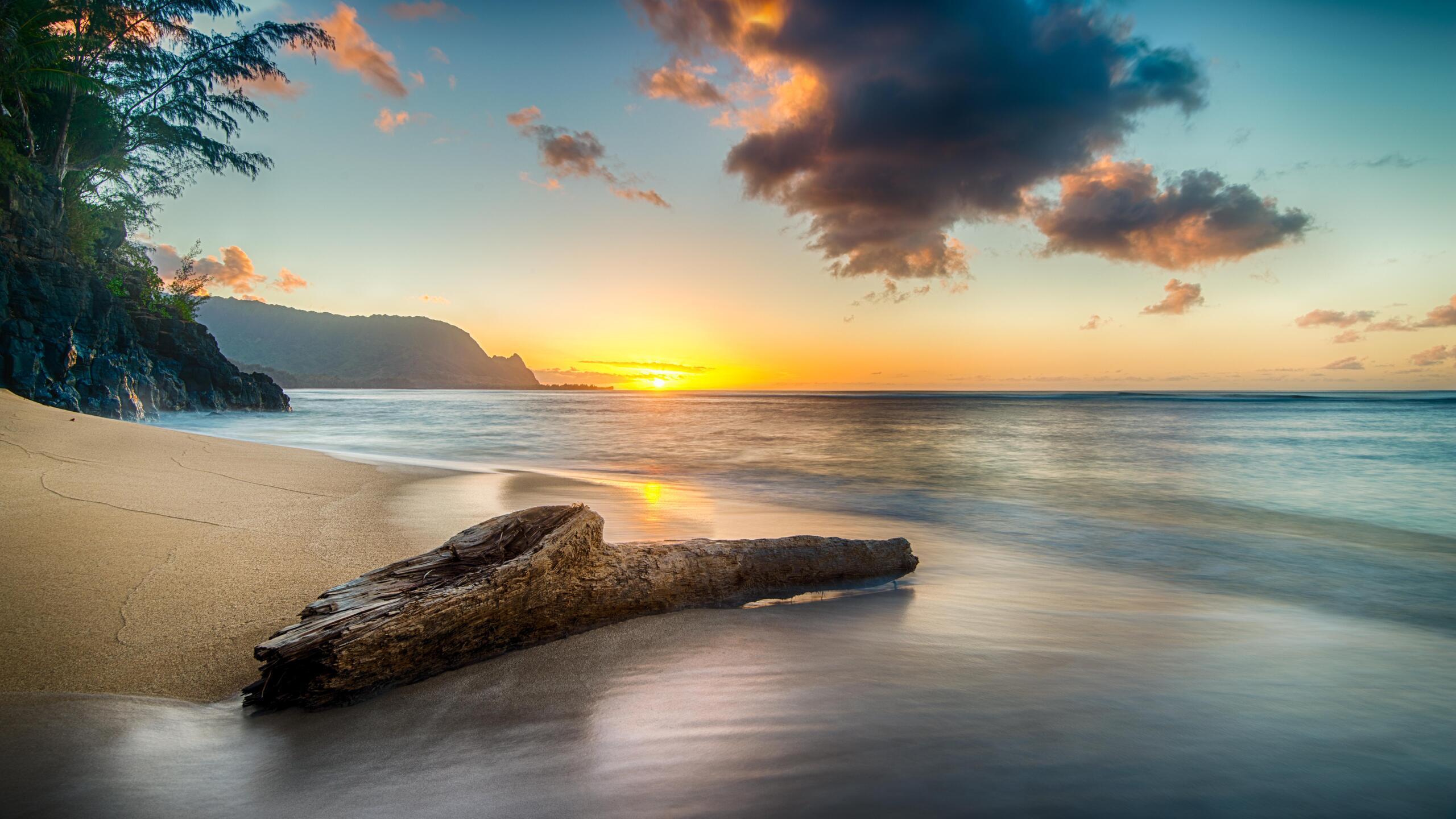 driftwood-on-beach-at-sunset-on-north-shore-of-kauai-8k-pc.jpg