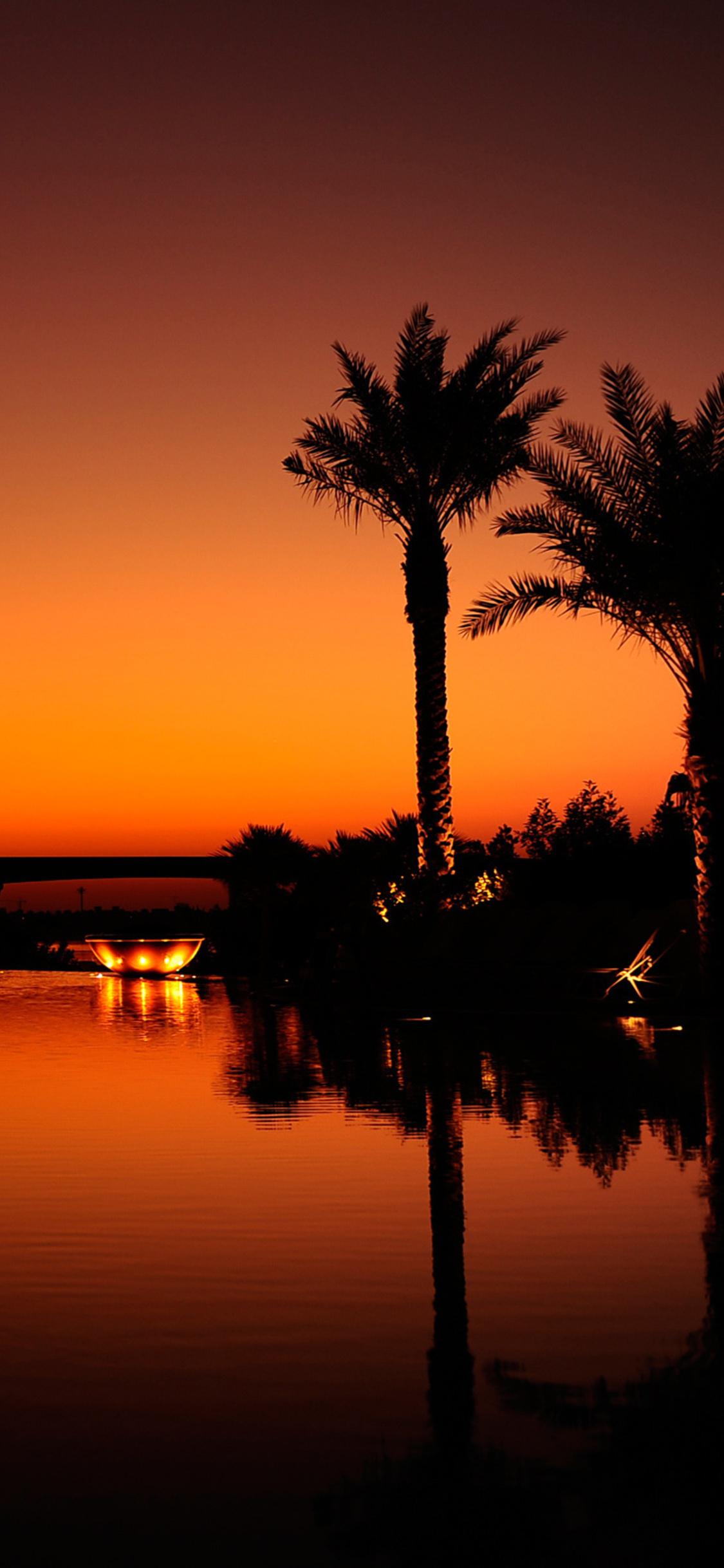 1125x2436 Dubai Palm Trees Sunset Reflection Iphone Xs