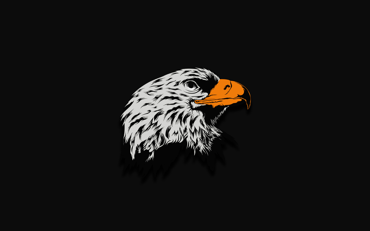 eagle-dark-illustration-8k-o1.jpg