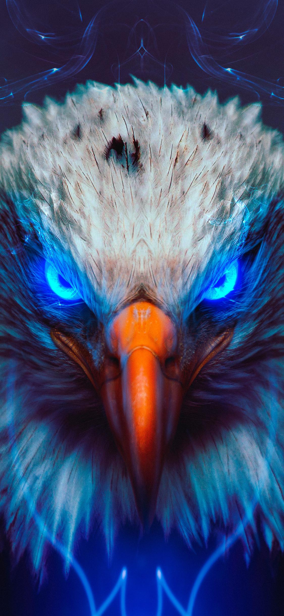 Eagle Wallpaper Iphone Hd | Impremedia.co