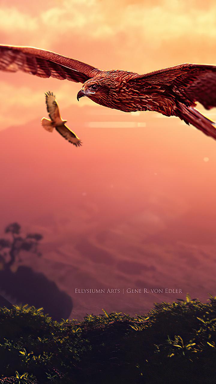 eagle-journey-ul.jpg