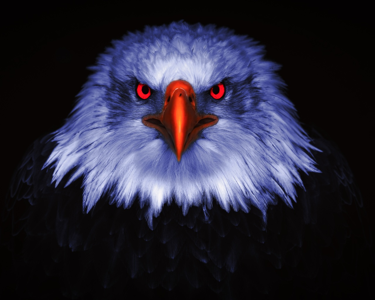 eagle-raptor-eyes-8k-xr.jpg