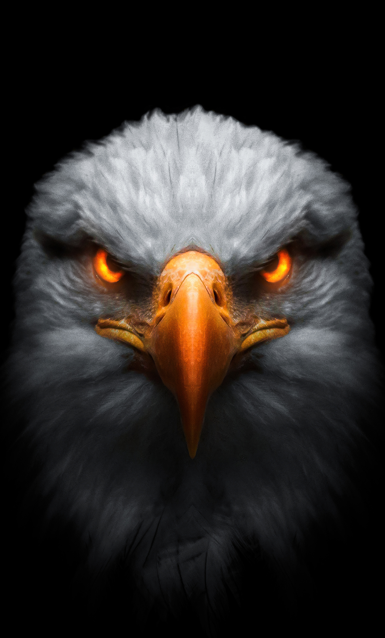 eagle-red-glowing-eyes-01.jpg