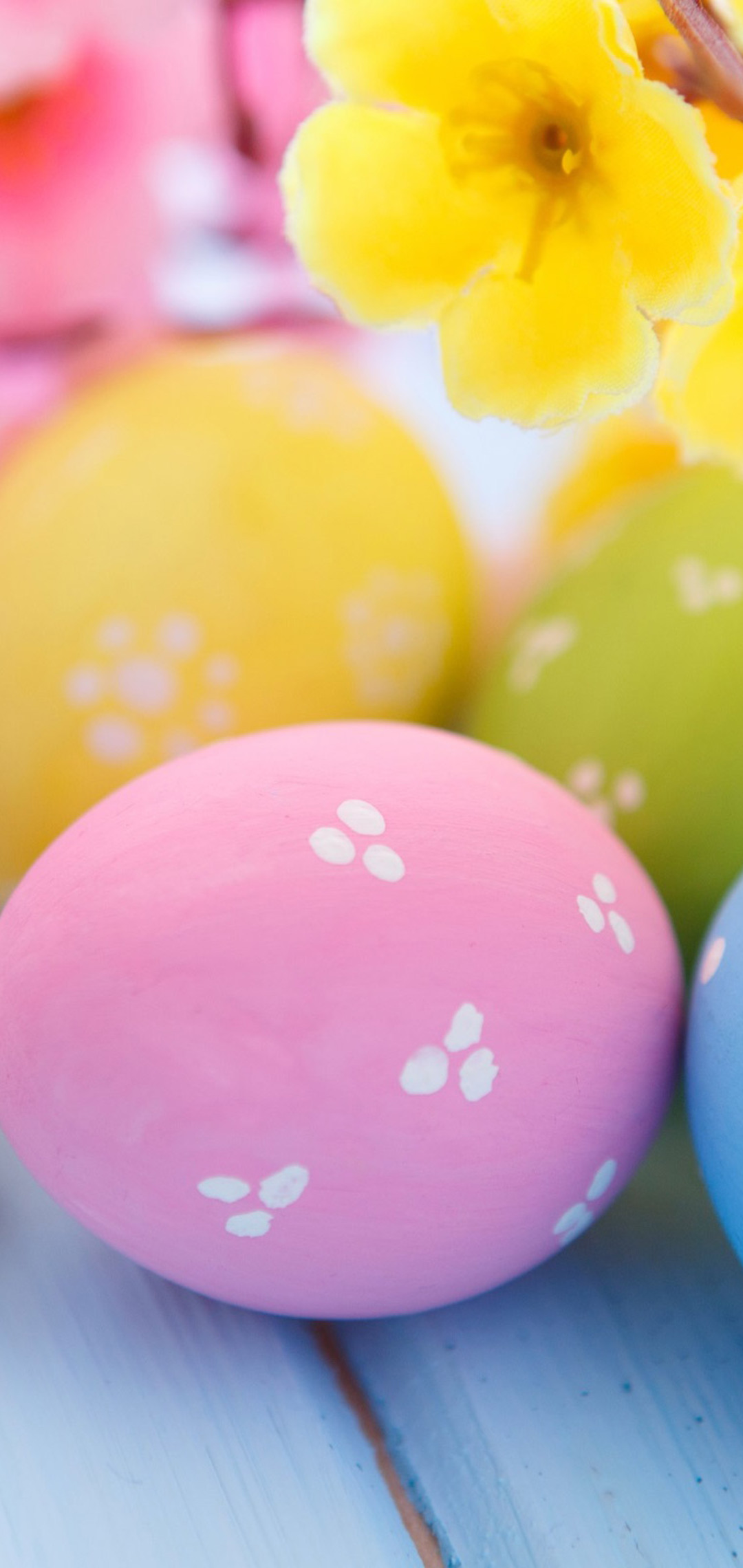 easter-eggs-and-spring-blossoms-ap.jpg