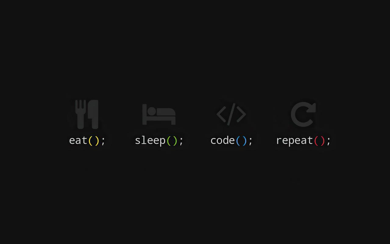 eat-sleep-code-repeat-er.jpg