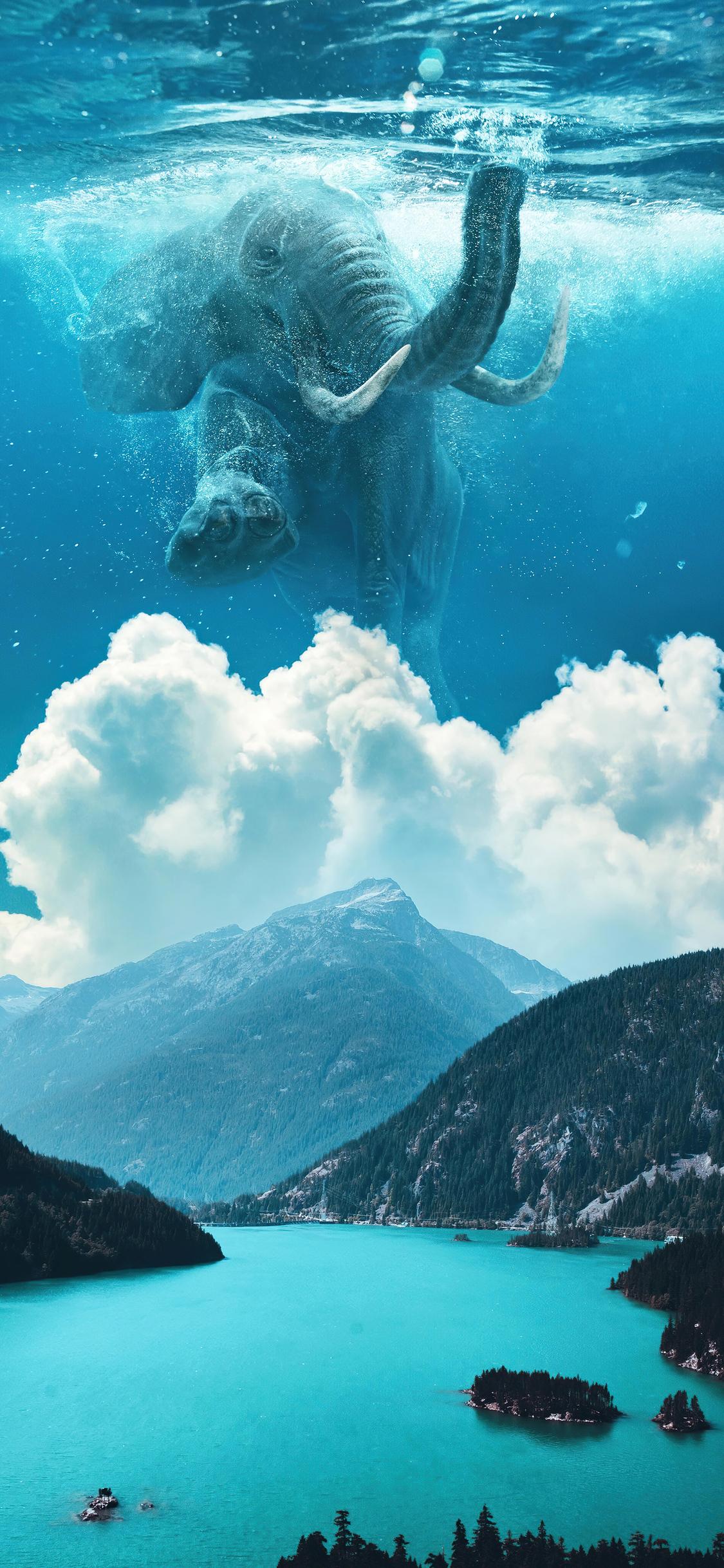 elephant-under-water-manipulation-4k-qm.jpg