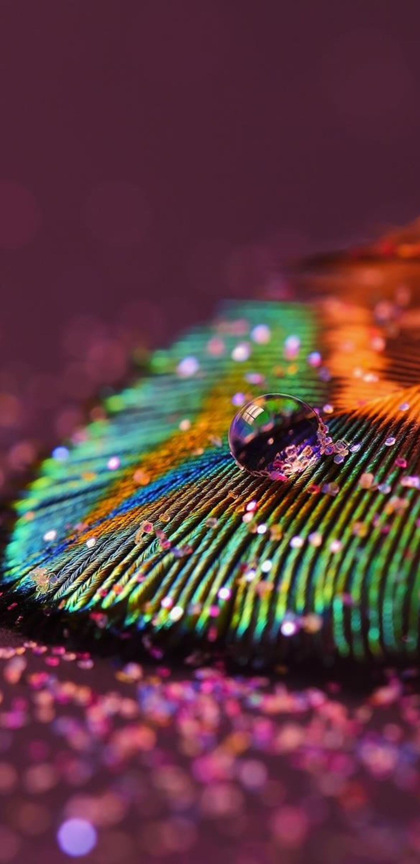 1440x2960 Feather Drop Samsung Galaxy Note 9 8 S9 S8 S8 Qhd Hd 4k Wallpapers Images Backgrounds Photos And Pictures