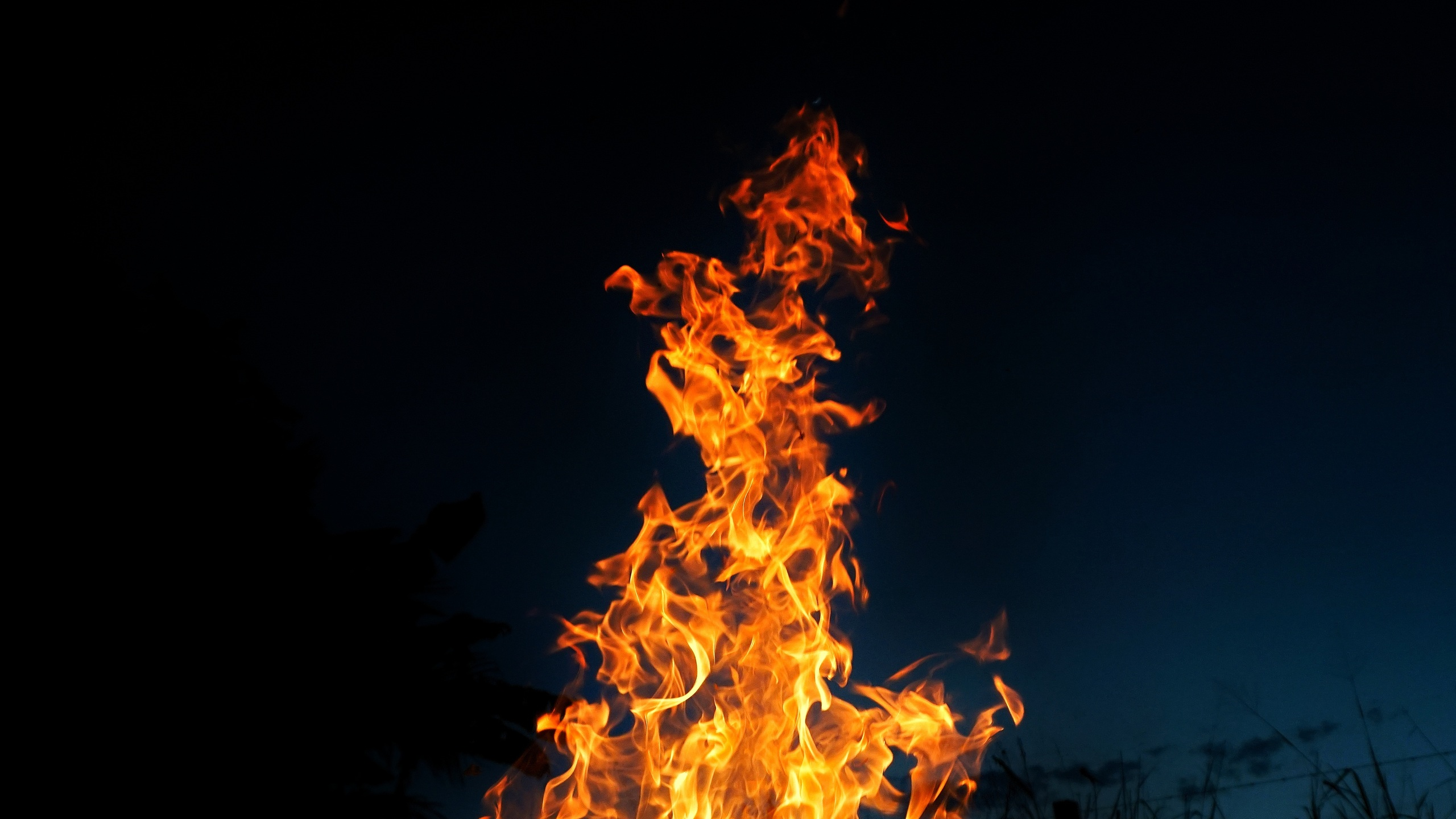 2560x1440 fire burning 1440p resolution hd 4k wallpapers images