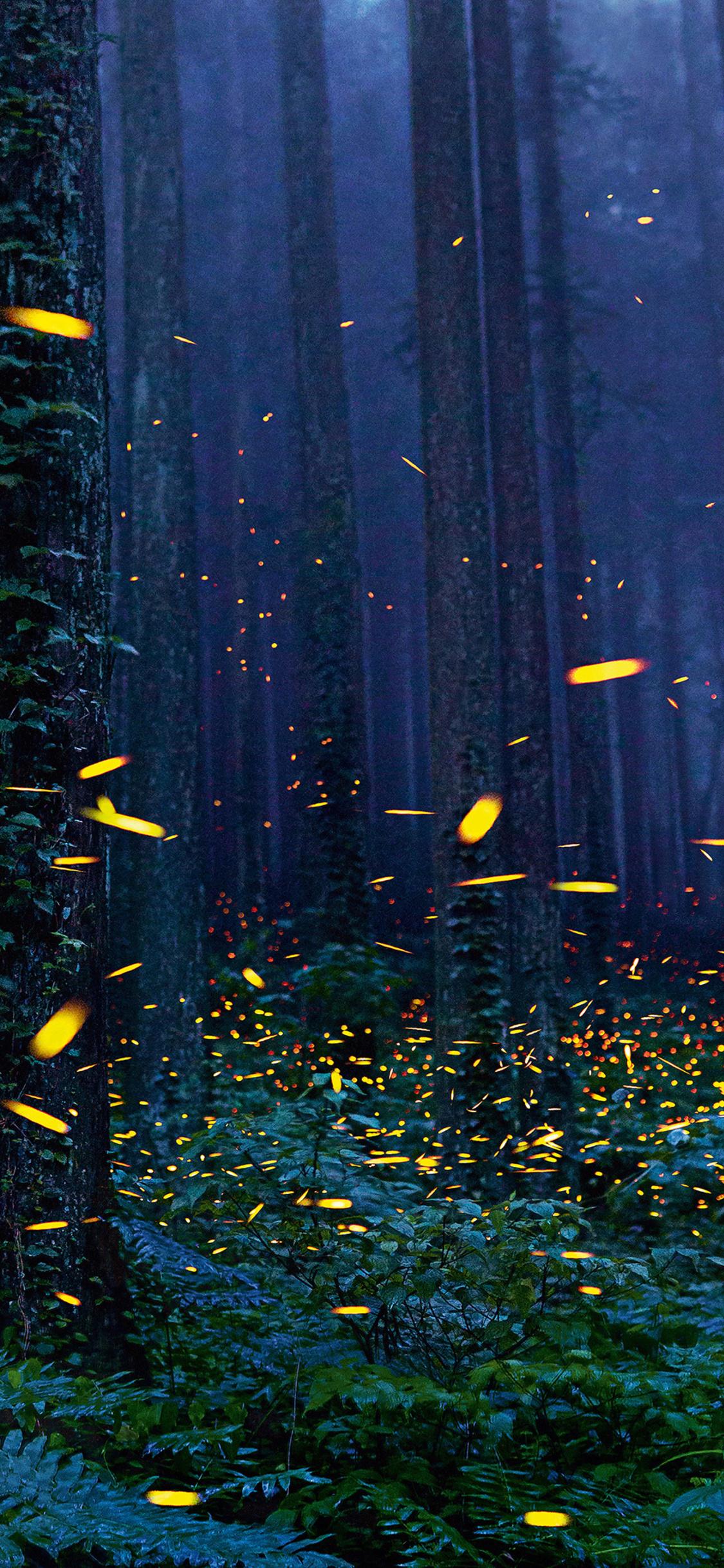1125x2436 Fireflies Forest 4k Iphone X,Iphone 10 HD 4k Wallpapers ... for Fireflies Wallpaper Iphone  545xkb