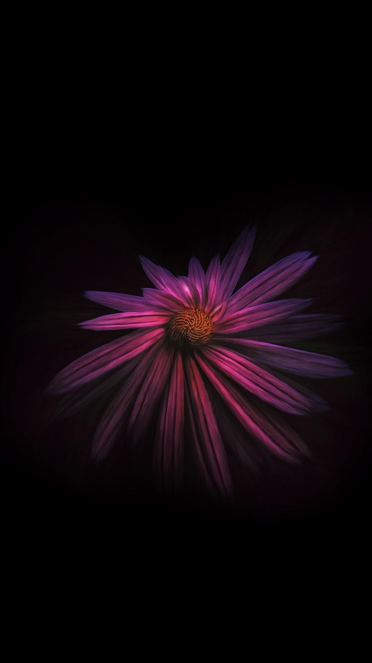 750x1334 Flower Dark Background 4k Iphone 6 Iphone 6s