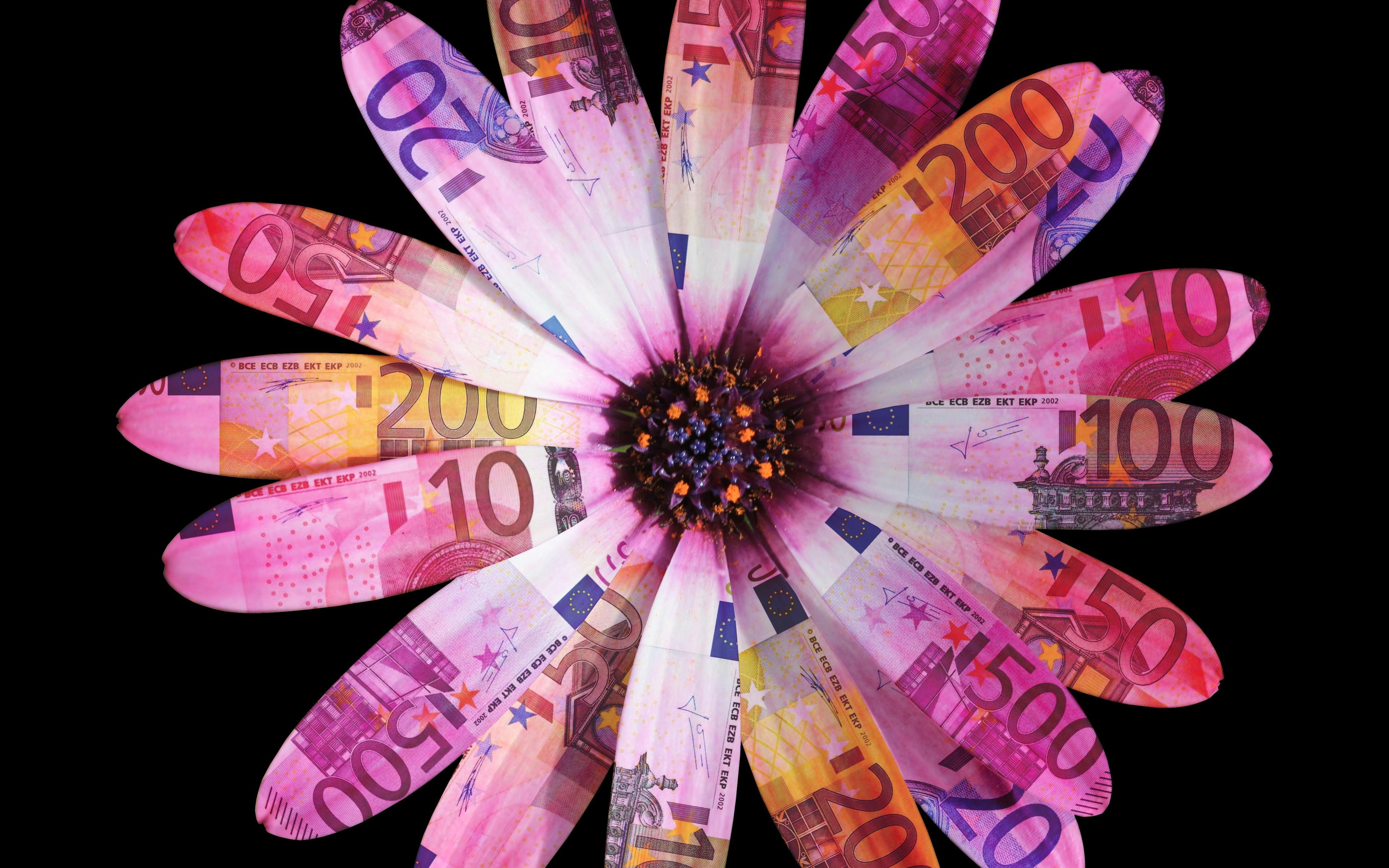 flower-petals-leaves-daisy-euro-6x.jpg