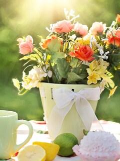 flowers-pot.jpg