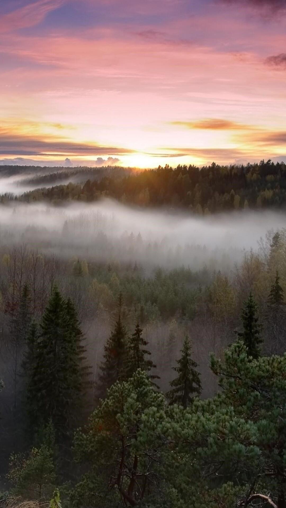 foggy-sunrise-national-park.jpg