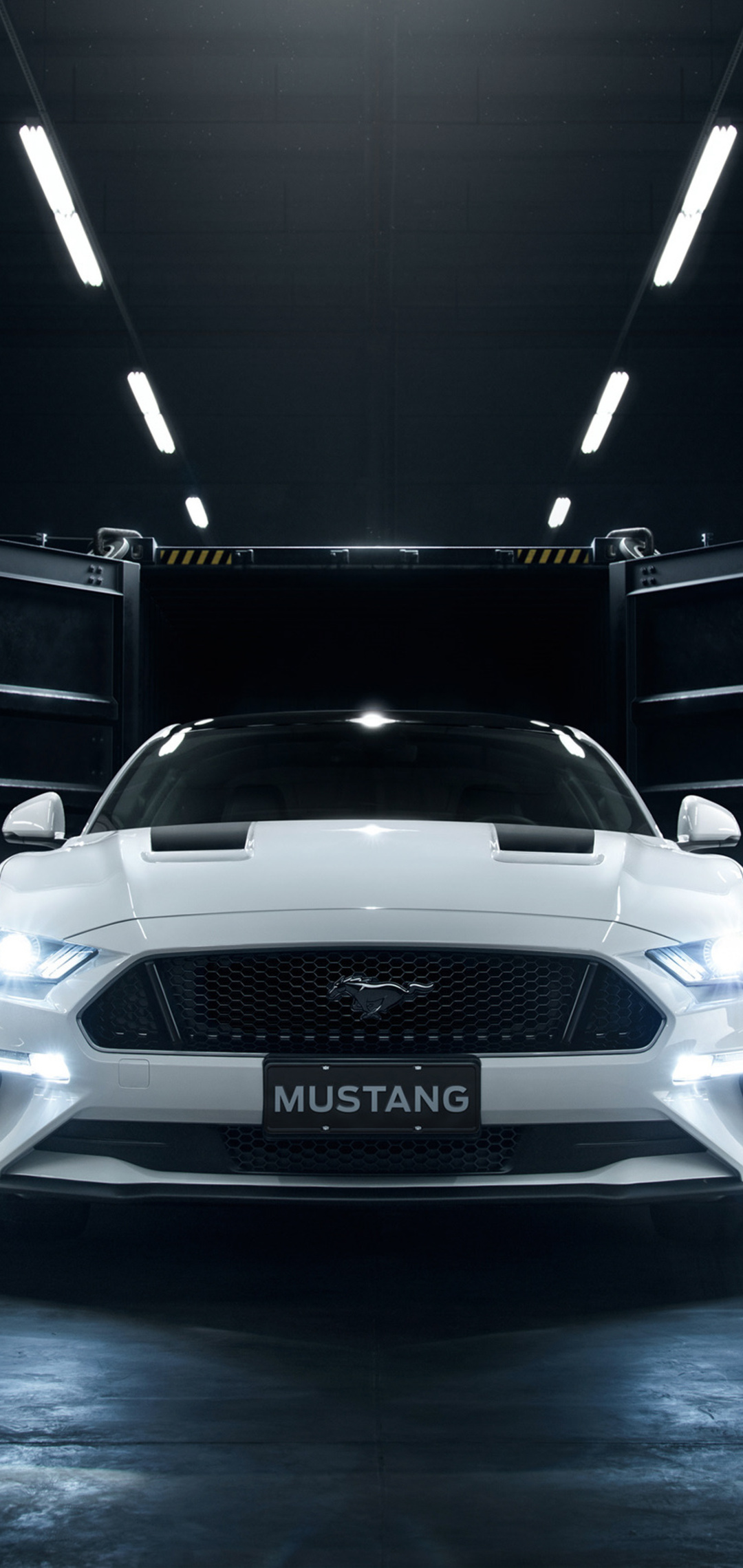 ford-mustang-shadow-edition-fw.jpg