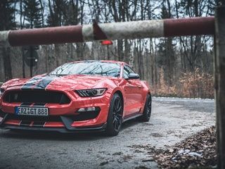 ford-mustang-shelby-gt350-red-stripes-4k-p8.jpg