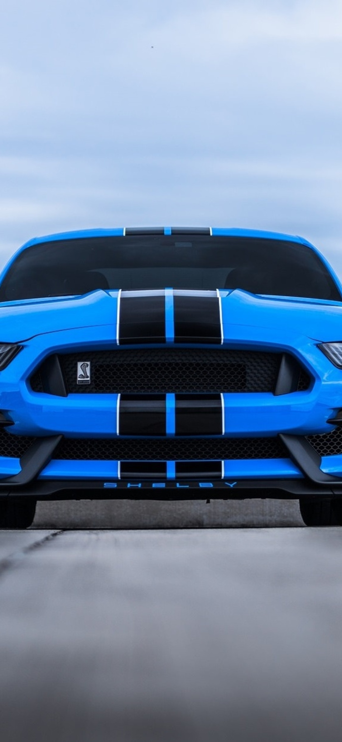 1125x2436 Ford Mustang Shelby Muscle Car Iphone Xs Iphone 10 Iphone