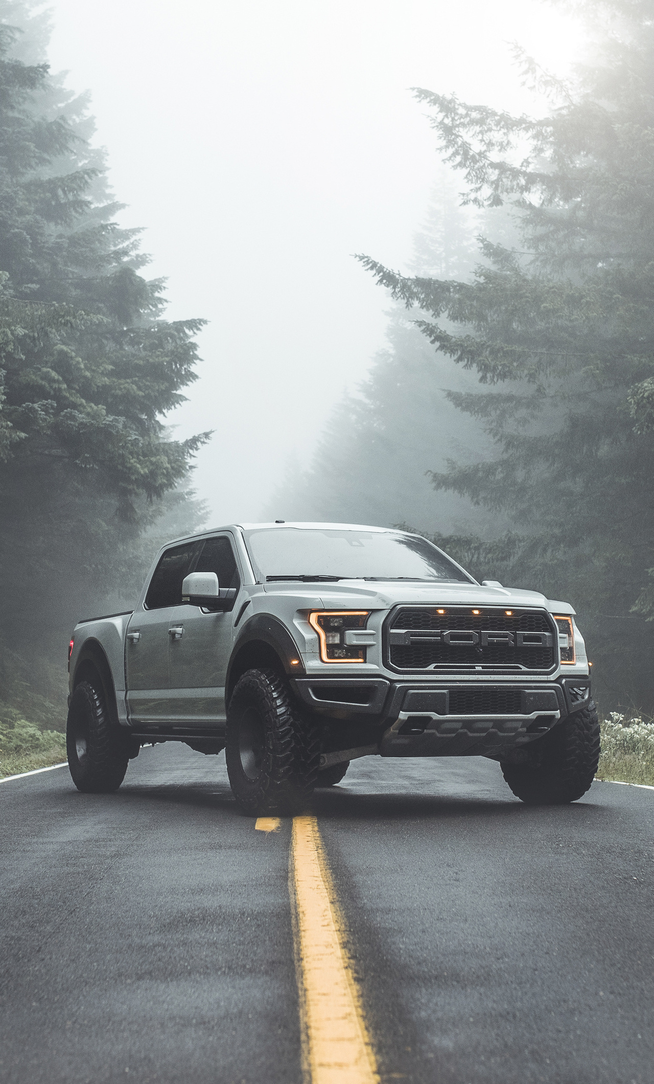 1280x2120 Ford Raptor 4k 2019 iPhone 6+ HD 4k Wallpapers