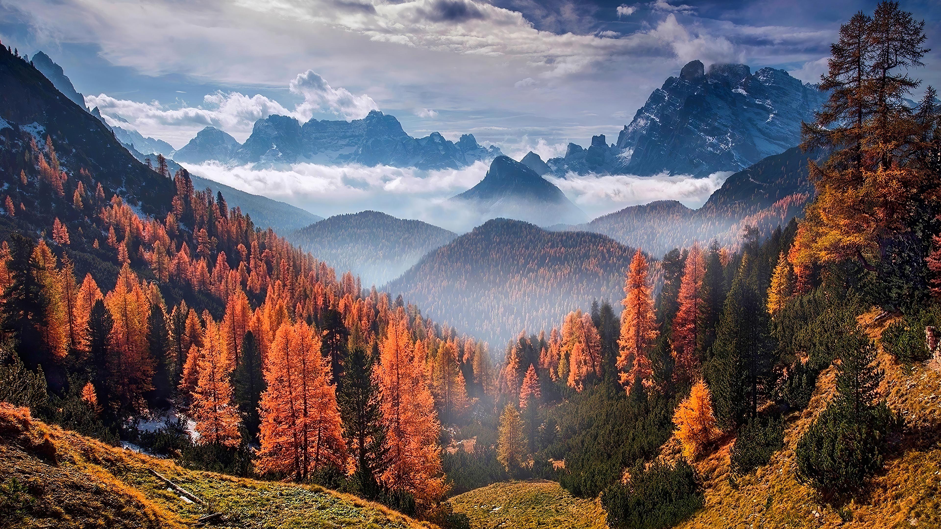 3840x2160 Forest Landscape Clouds 4k 4k HD 4k Wallpapers ...