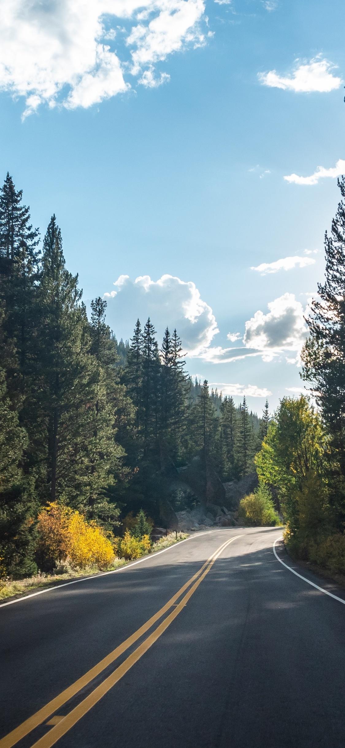 1125x2436 Forest Road Asphalt Landscape 5k Iphone Xs Iphone