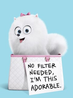 gidget-the-secret-life-of-pets.jpg