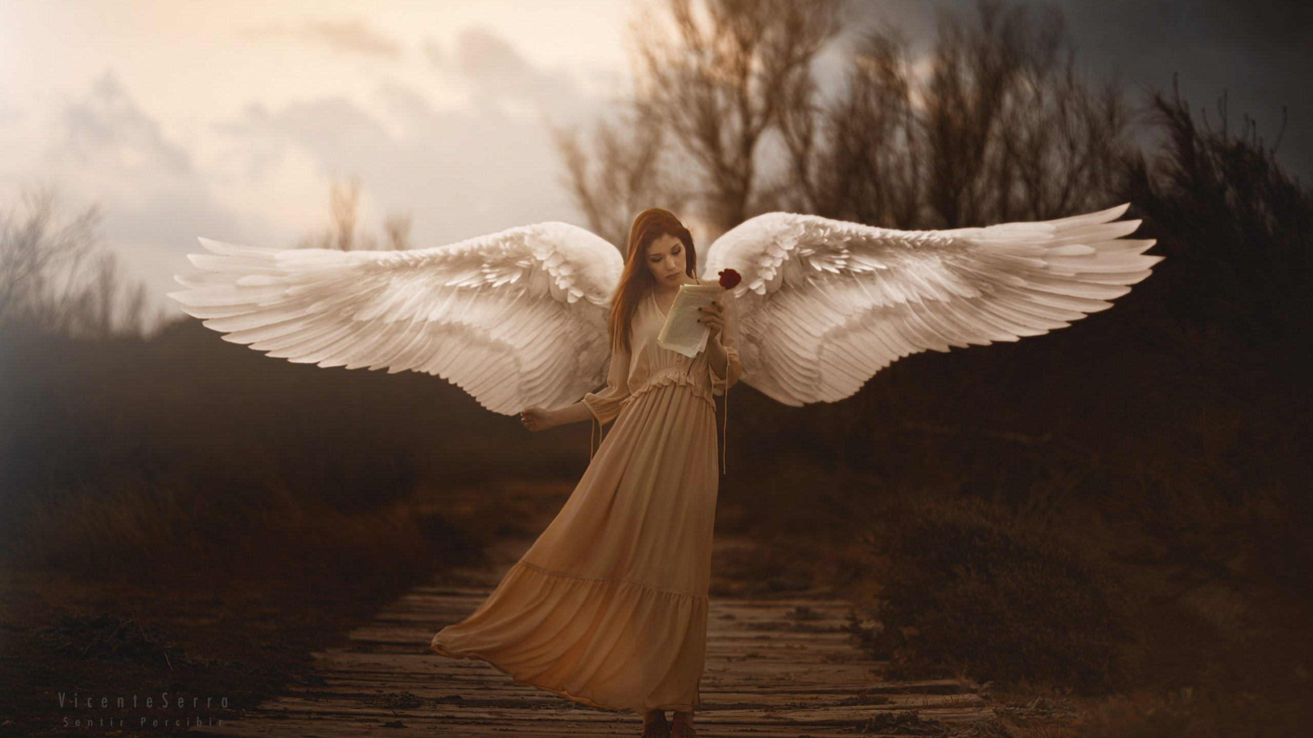 girl-with-wings-angel-e8.jpg