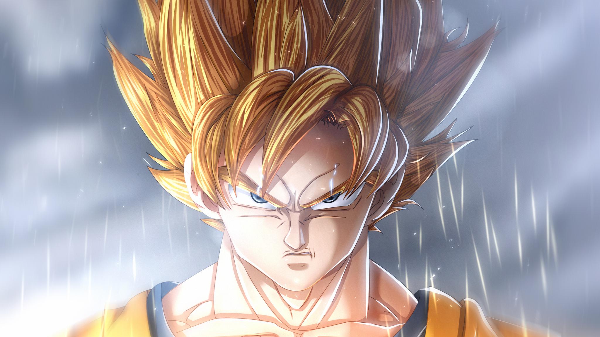 2048x1152 Goku Dragon Ball Super Anime Manga 2048x1152