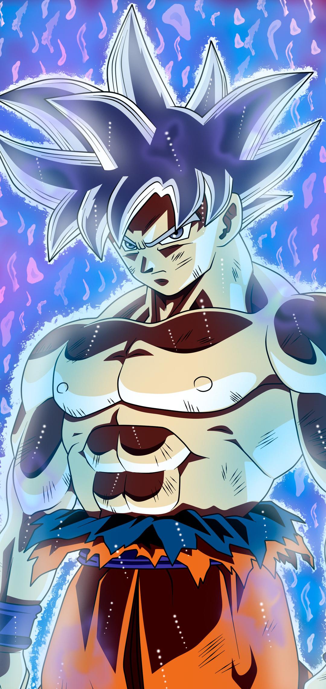 goku-migatte-no-gokui-perfecto-ultra-instinct-dragon-ball-wr.jpg