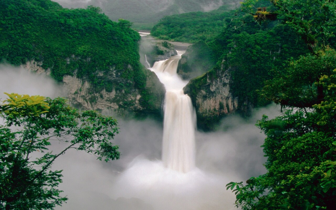 green-forest-waterfall.jpg