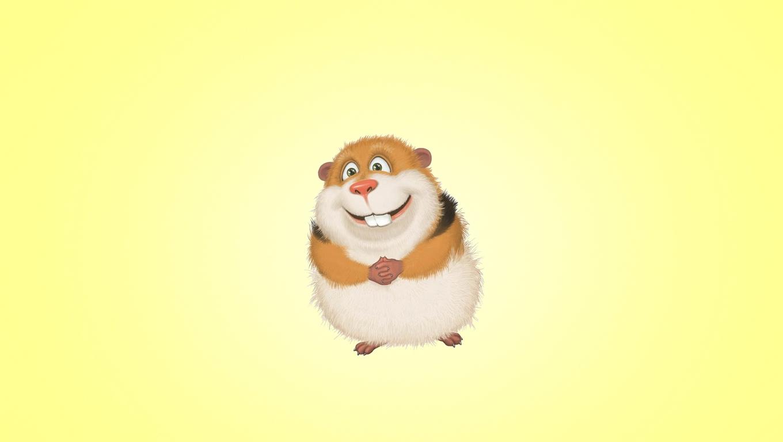 guinea-pig-hamster.jpg