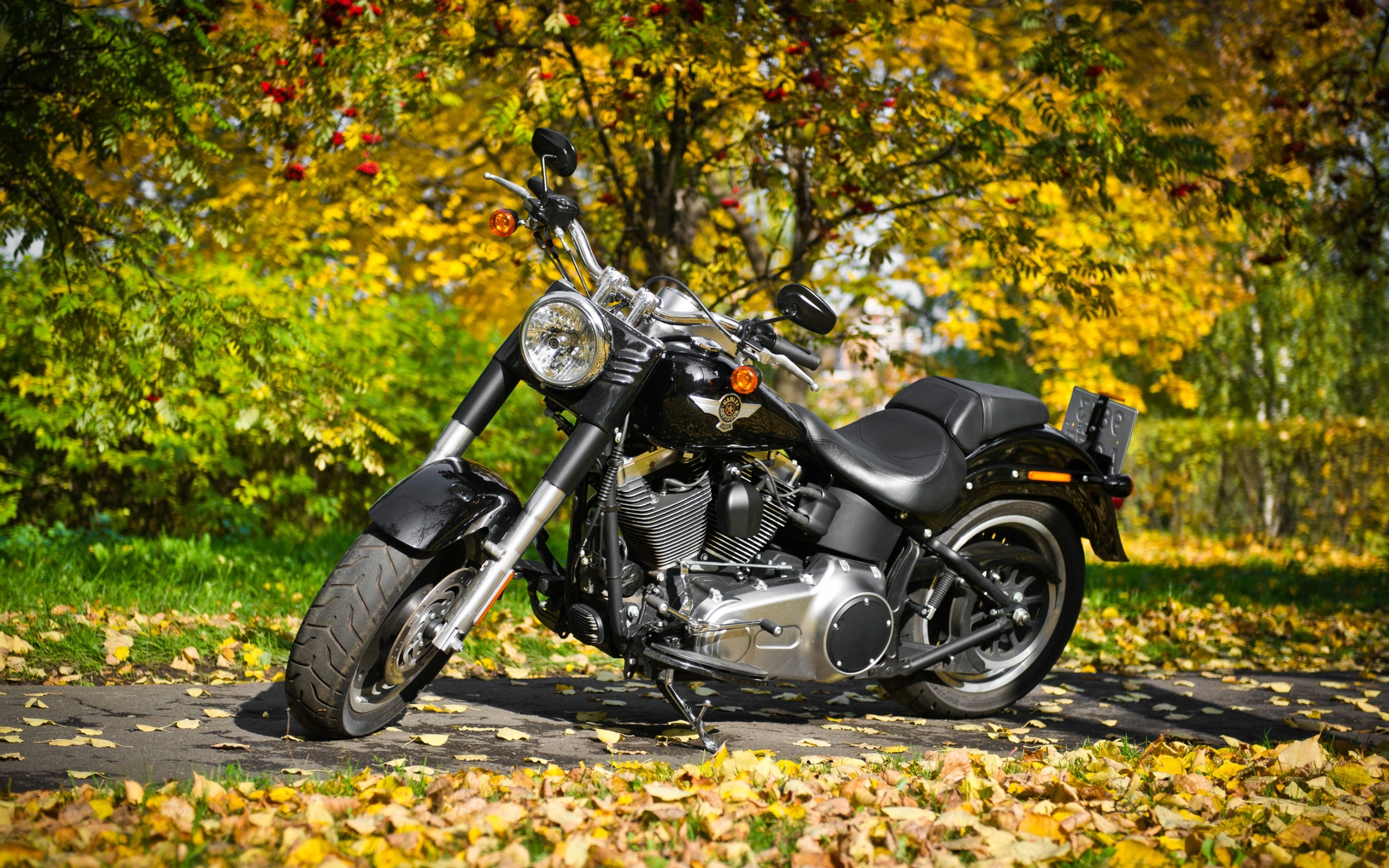 harley-davidson-motorcycle-2.jpg