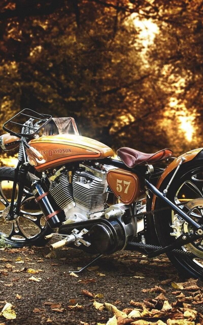 harley-davidson-motorcycle.jpg