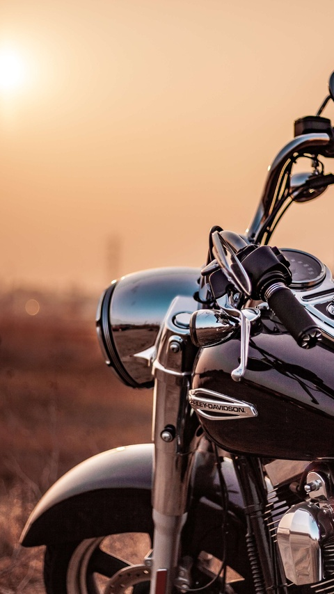 harley-davidson-somewhere-c0.jpg