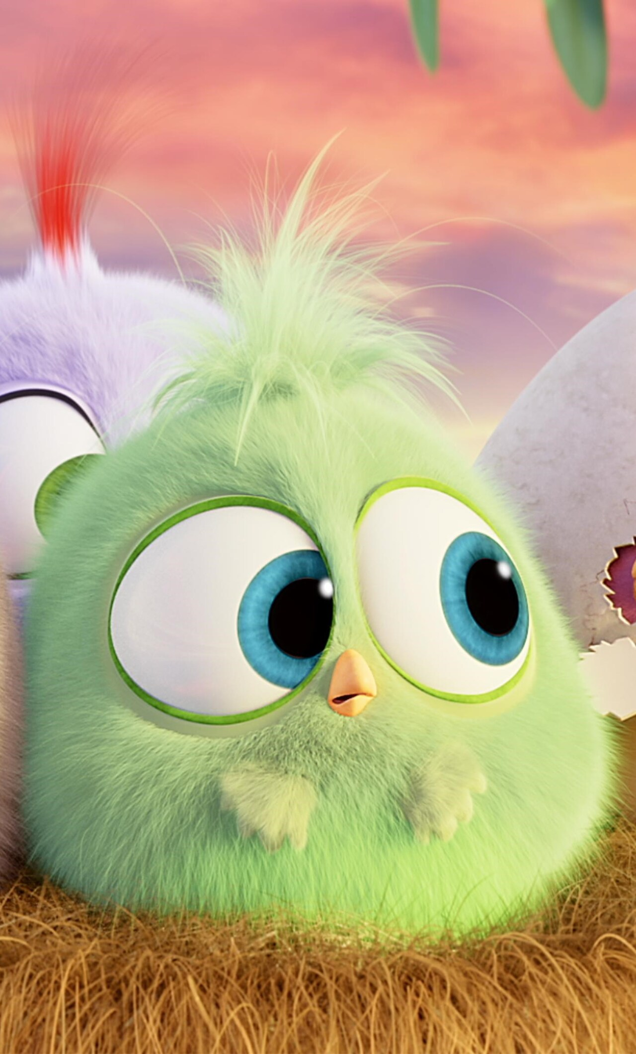 1280x2120 Hatchlings Angry Birds Iphone 6 Hd 4k Wallpapers Images