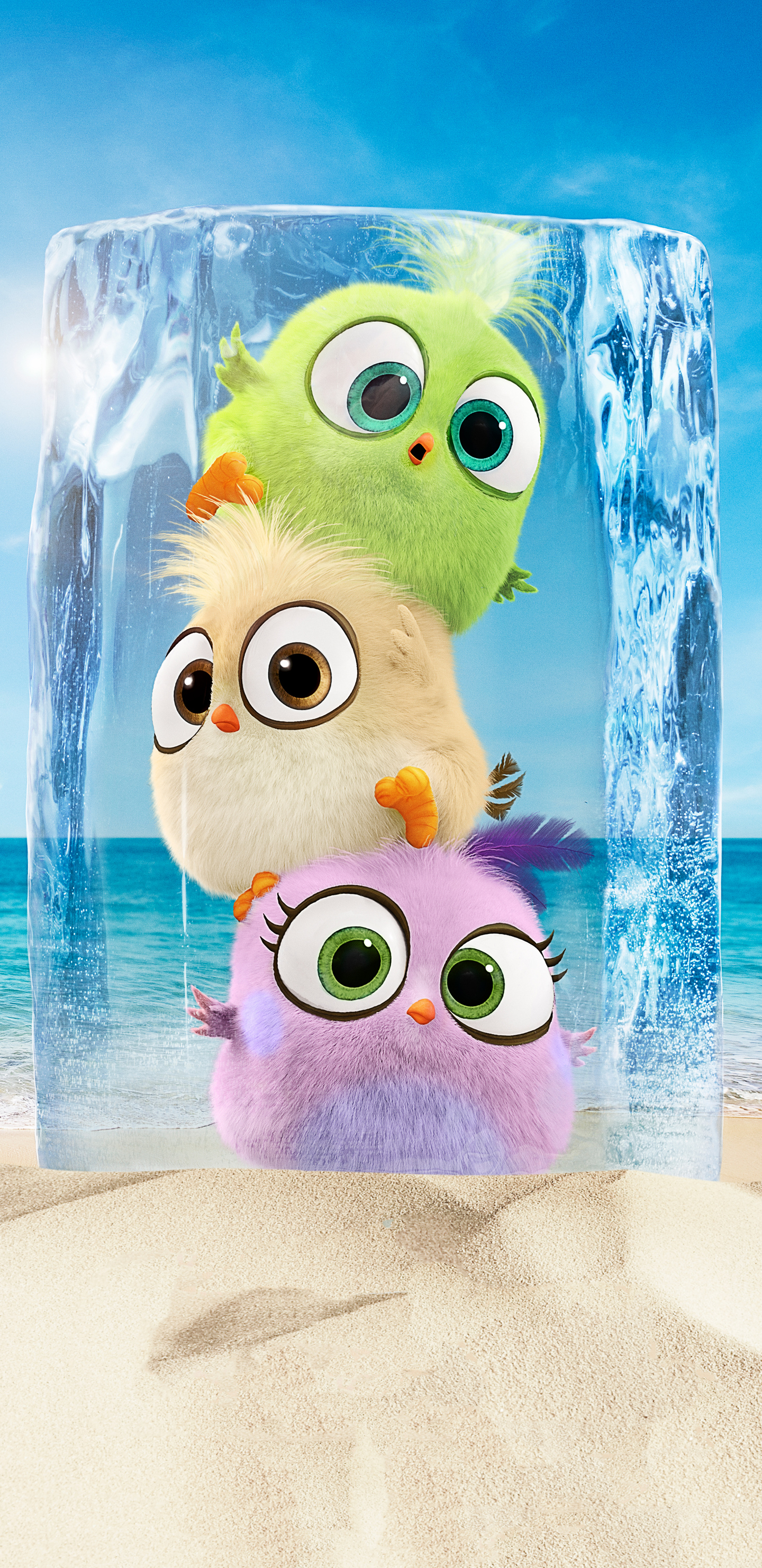1440x2960 Hatchlings In The Angry Birds Movie 2 Samsung Galaxy Note 9 8 S9 S8 S8 Qhd Hd 4k Wallpapers Images Backgrounds Photos And Pictures