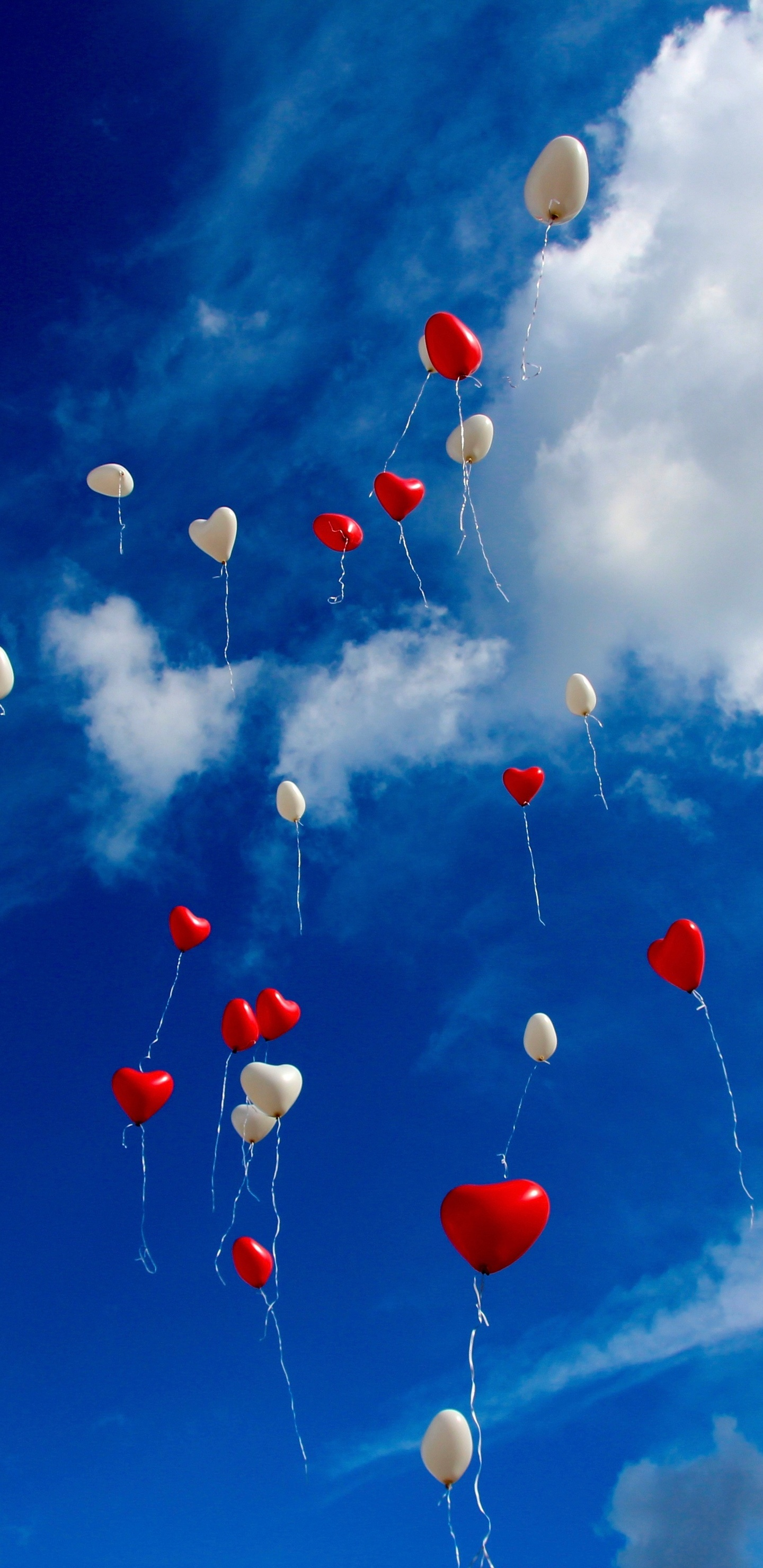 1440x2960 heart shape balloons in sky samsung galaxy note - Samsung s9 wallpaper 4k ...