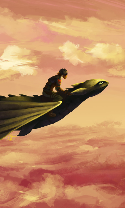hiccup-and-toothless-flying-ay.jpg