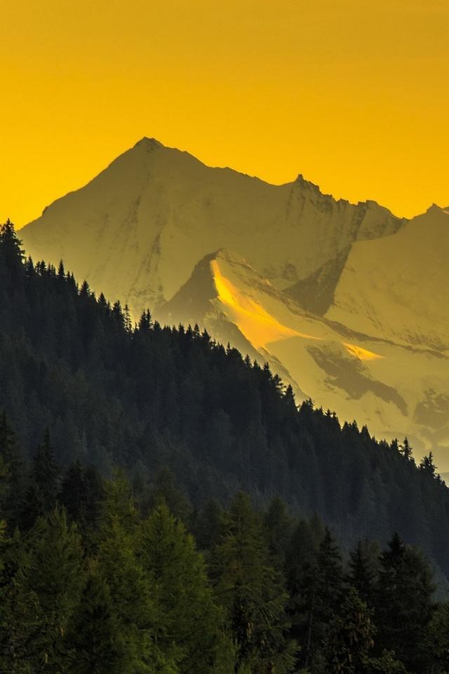hills yellow landscape 4k mz
