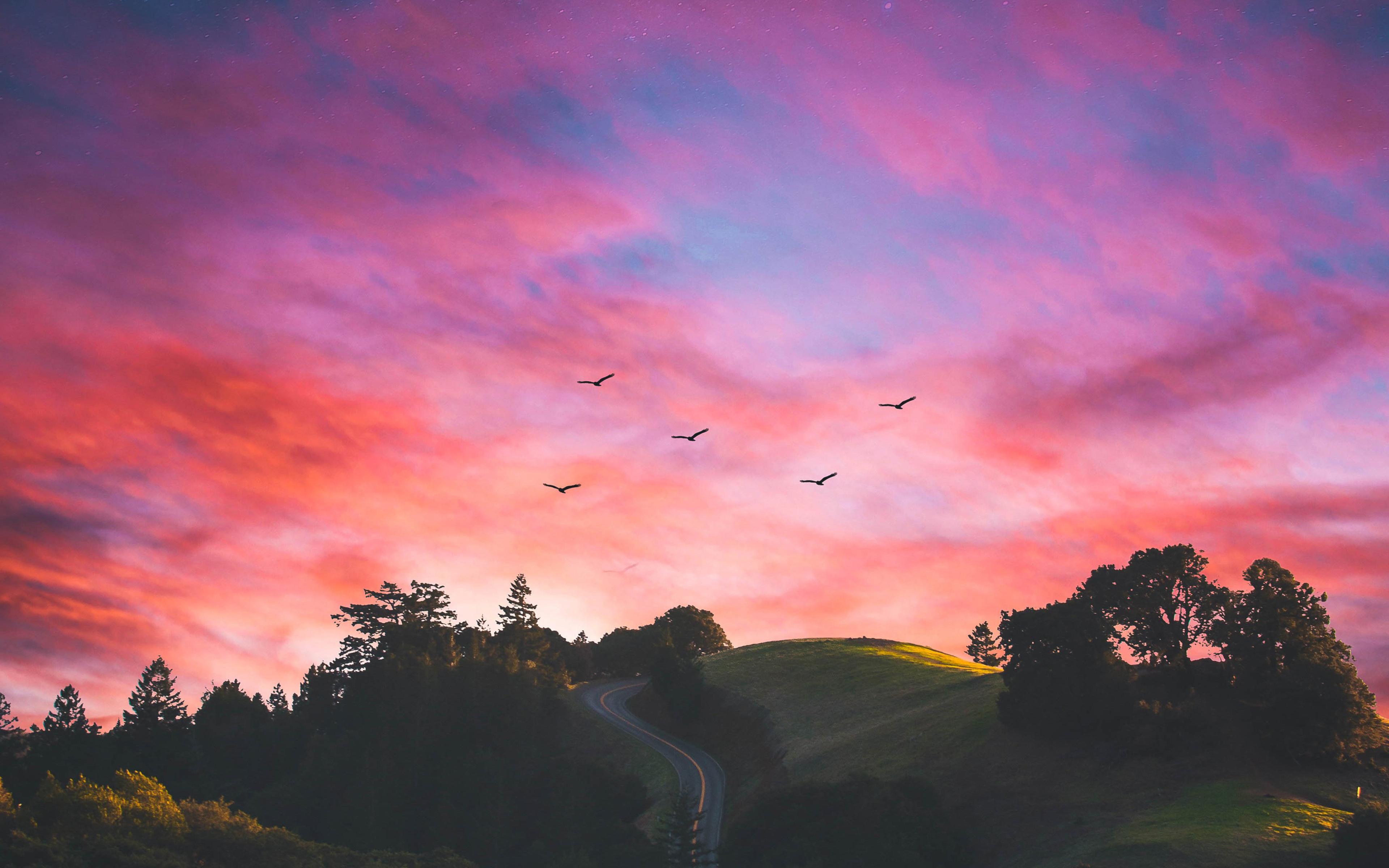 horizons-of-nature-mj.jpg