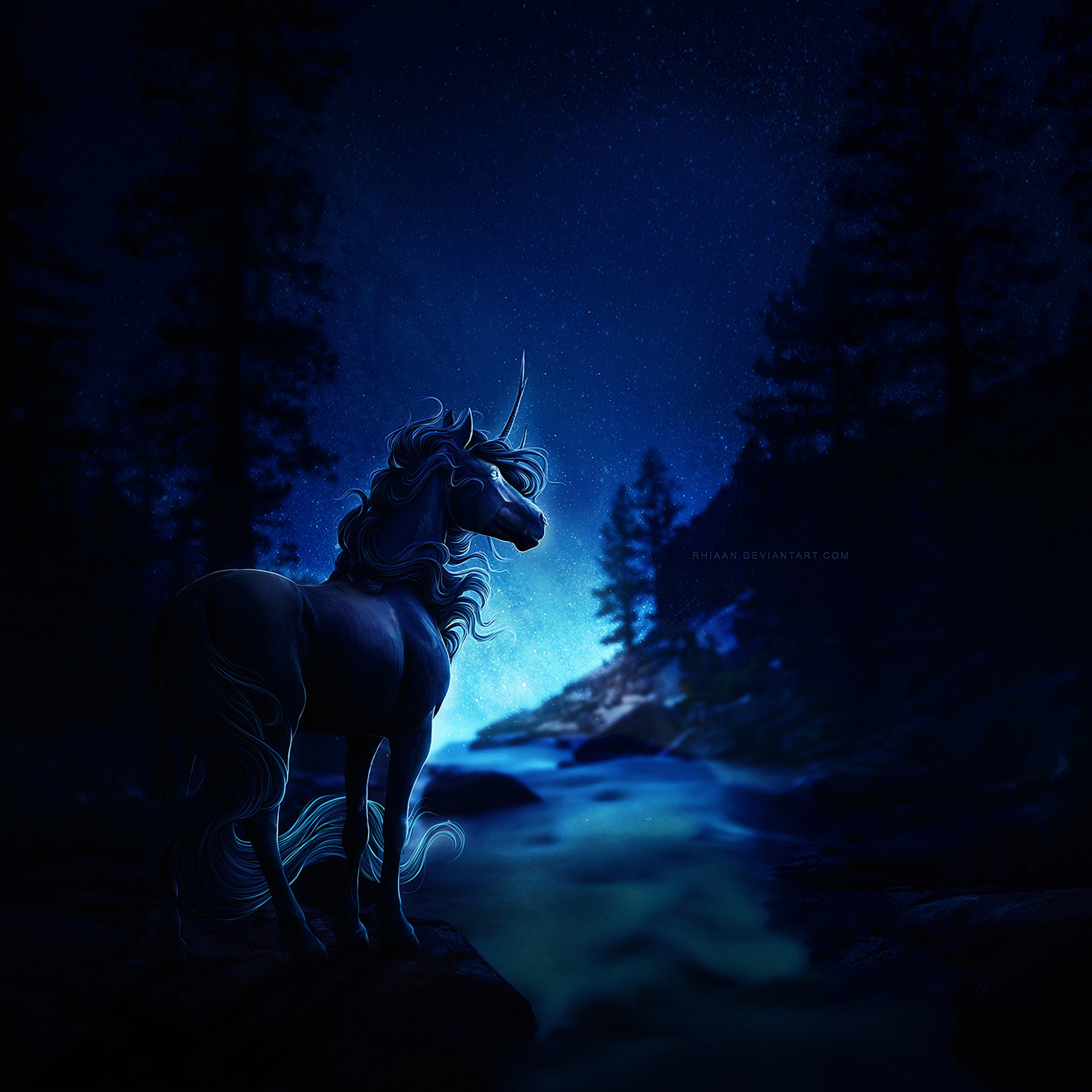 2048x2048 Horse Blue Night Ipad Air Hd 4k Wallpapers Images Backgrounds Photos And Pictures