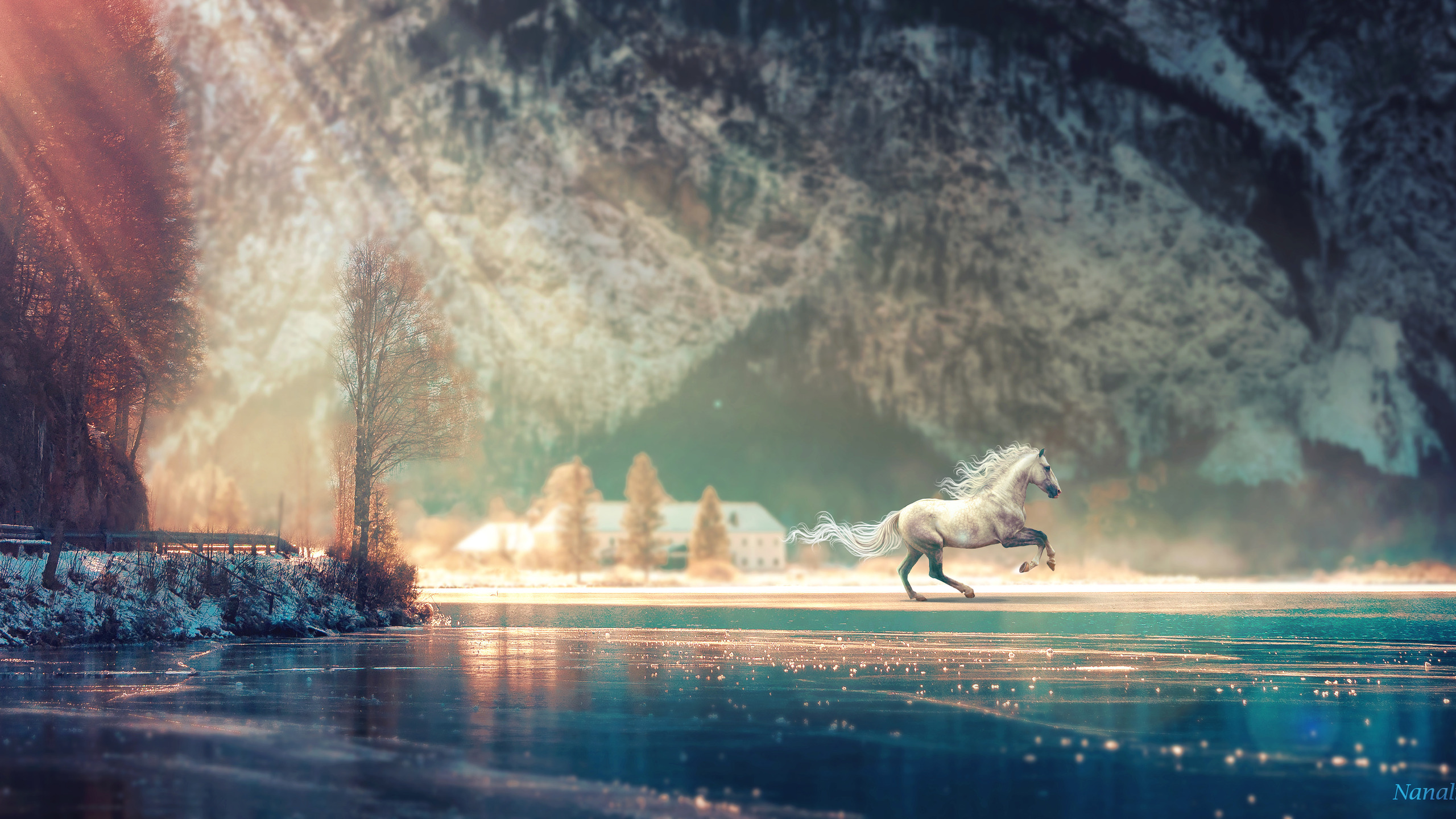 2560x1440 Horse Running Fantasy 4k 1440p Resolution Hd 4k Wallpapers Images Backgrounds Photos And Pictures