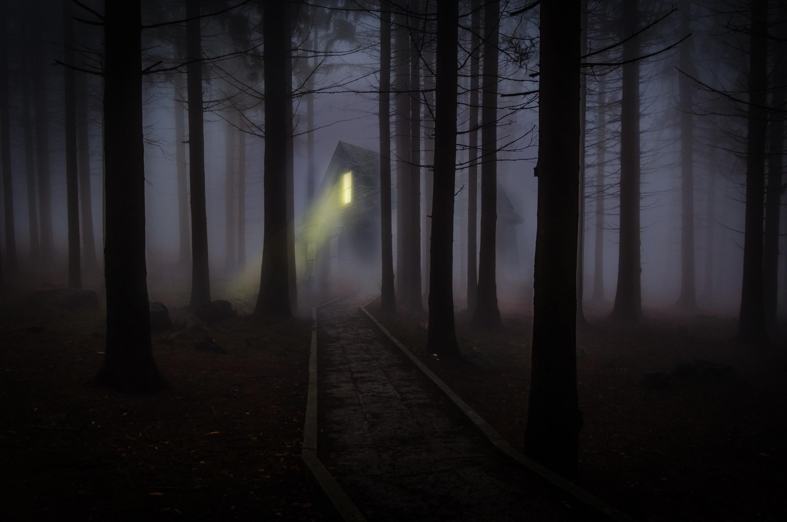 2560x1700 House Forest Fog Woods Trees Chromebook Pixel Hd 4k